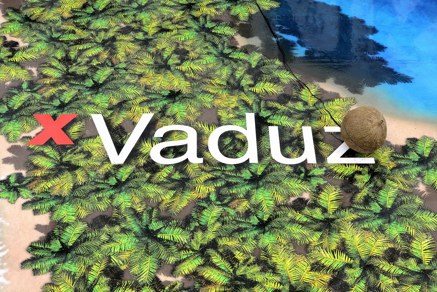 T293 - Simon Denny – 'TEDxVaduz redux' - 1