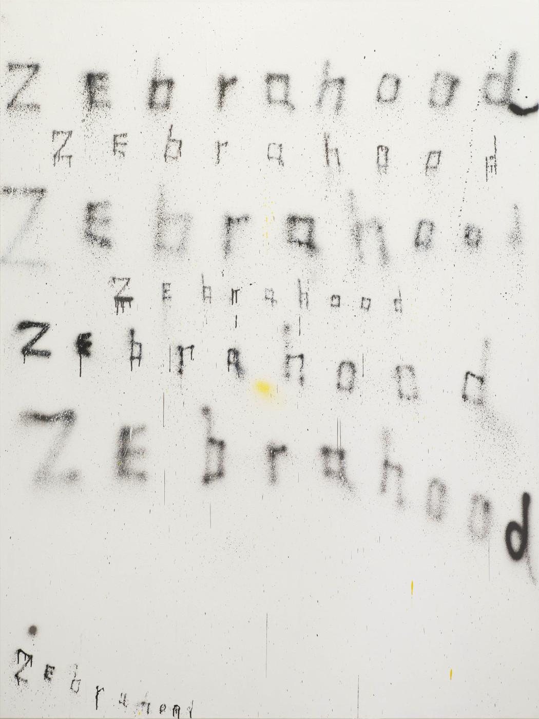 T293 - Fabian Herkenhoener - 9